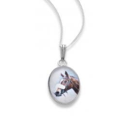 http://www.theripleycollection.co.uk/134-thickbox_default/your-horse-pendant-chain.jpg